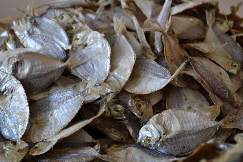 Pfl export for Dried fish philippines